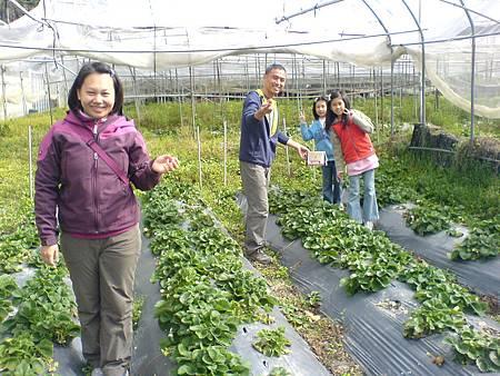 潭哥全家採草莓
