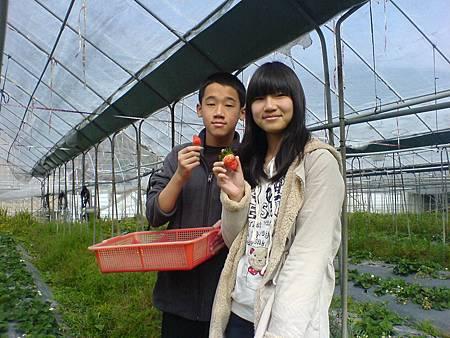 """叔愉""""叔和農場採草莓"""