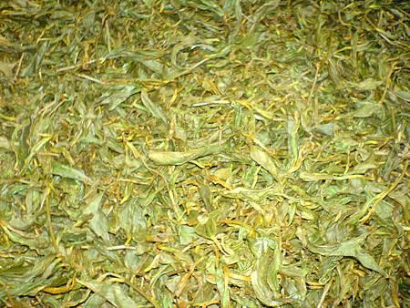 噴霧發酵後的茶葉