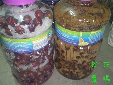 製作完成的紅肉李酒[右邊為黑糖,左邊為冰糖]