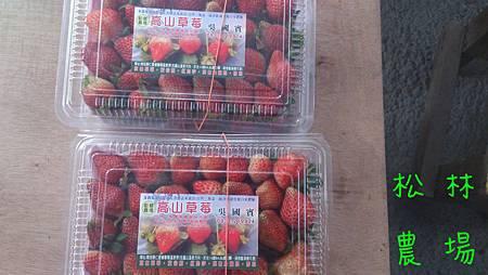包裝好的草莓[透明盒裝]
