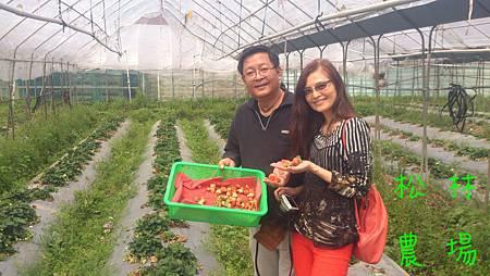 桃園的蔡先生和簡麗芬夫妻參觀農場