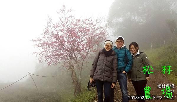 松林農場20180203姪女小瑜帶朋友參觀農場