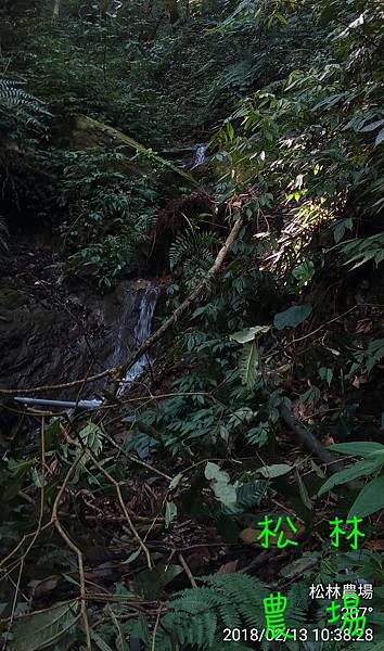 松林農場20180213水源頭坍方