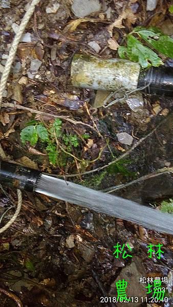 松林農場20180213整理好的水源頭
