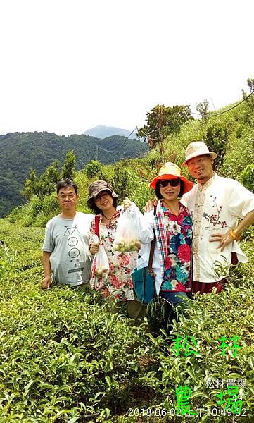 松林農場20180602石大哥帶彭雪人夫妻參訪農場