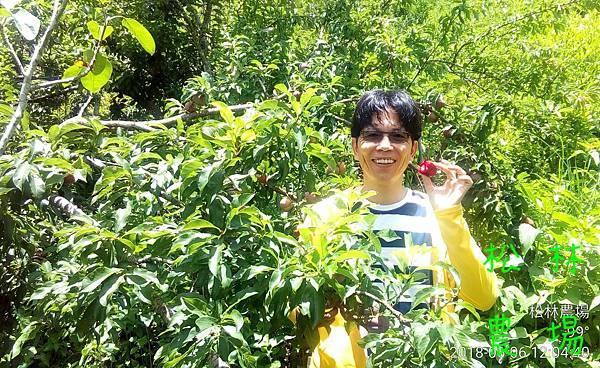 松林農場20180606_台南劉先生夫妻到農場產地之旅