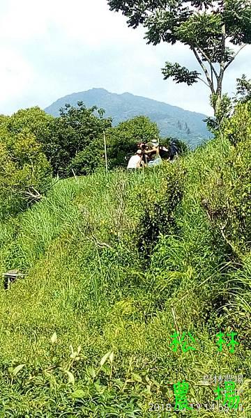 松林農場20180613_大愛台%22農夫與他的田%22採訪農場製作專輯