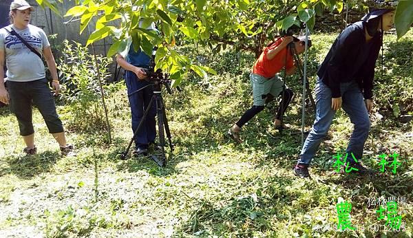 松林農場20180614_大愛台%22農夫與他的田%22採訪農場製作專輯