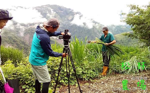 松林農場20180615_大愛台%22農夫與他的田%22採訪農場製作專輯