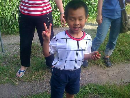 嘉義曾慶寬小弟弟吃農場草莓的可愛模樣