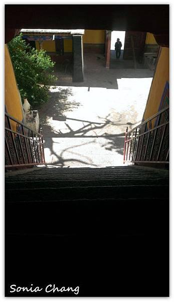 《奔跑在西藏最大寺廟 –哲蚌寺!》16
