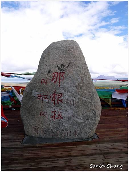 西藏。在天邊!《好福氣–世界神山日.慶德鄉望果節!》28