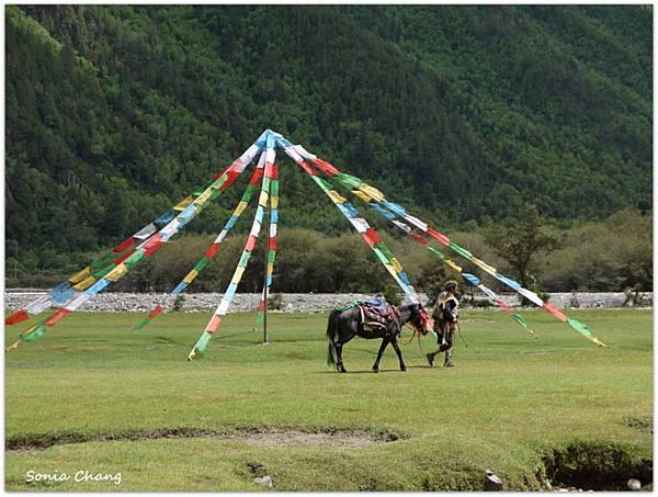 《珍貴甘霖–西藏.林芝!》06
