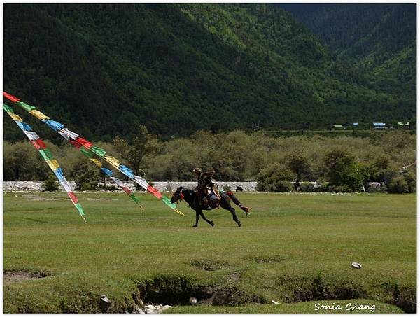 《珍貴甘霖–西藏.林芝!》08