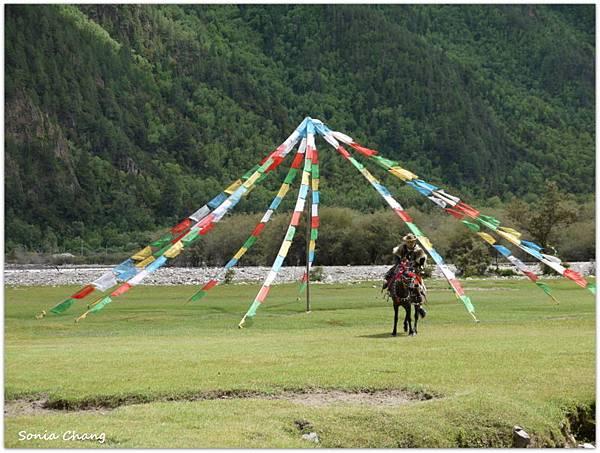 《珍貴甘霖–西藏.林芝!》07
