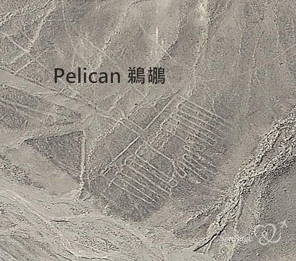 Nazca Lines,外星人帶不走的畫作!08.jpg