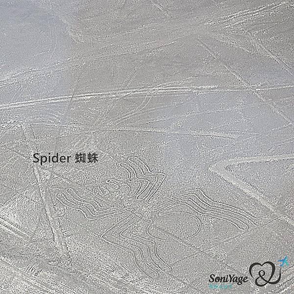 Nazca Lines,外星人帶不走的畫作!10.jpg