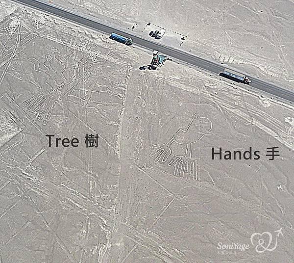 Nazca Lines,外星人帶不走的畫作!13.jpg
