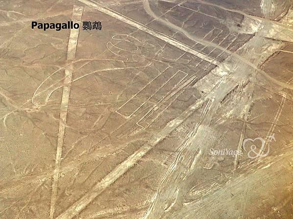 Nazca Lines,外星人帶不走的畫作!18.JPG