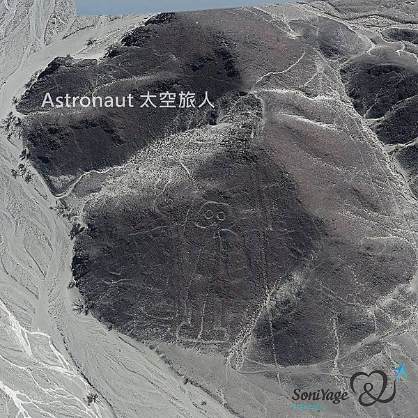 Nazca Lines,外星人帶不走的畫作!20.jpg