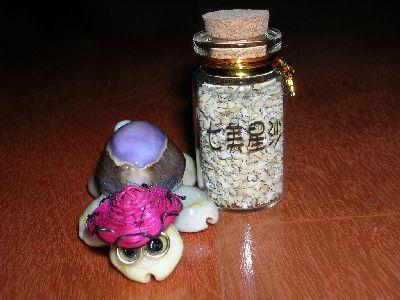 紀念品-星沙.小烏龜