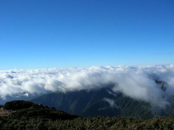 山頂的view