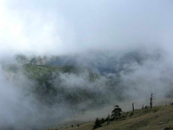 霧朦朦的品田山
