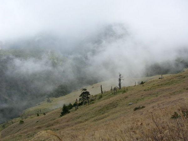 霧朦朦的山頭