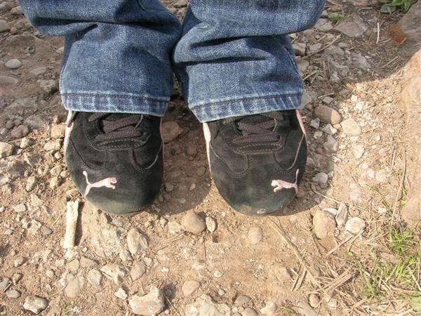 小君的虎標鞋