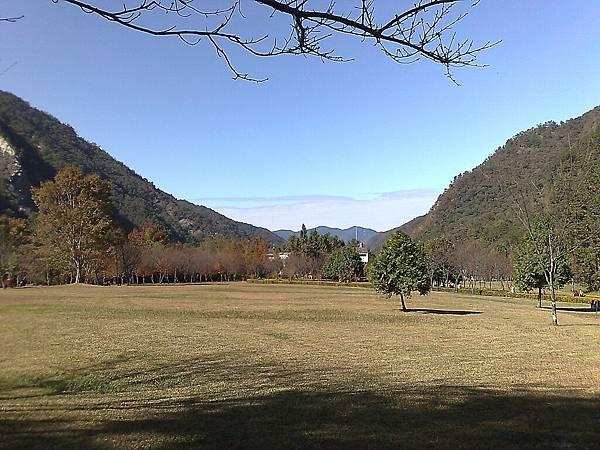 20071209867.jpg
