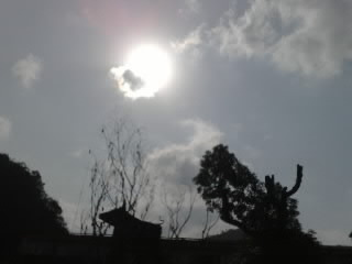 200801011136-001.jpg