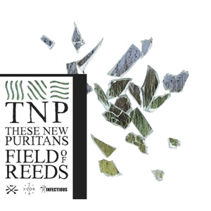 These New Puritans-Fields Of Reeds