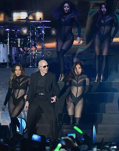 Pitbull--6