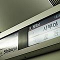 NX_13.jpg
