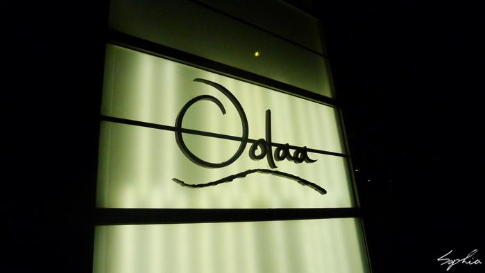 OL_01