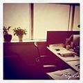SH office.jpg