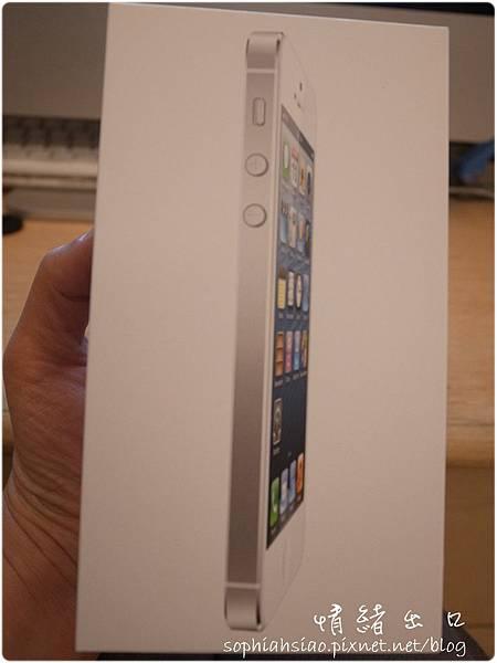 20121214-212900-035.JPG