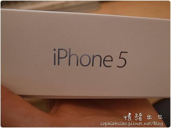 20121214-212907-036.JPG