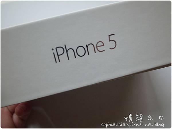 20121215-064624-005.JPG