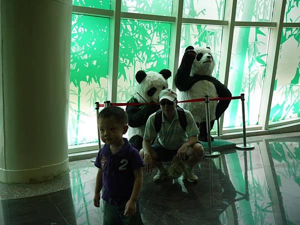 動物園-大貓熊.JPG