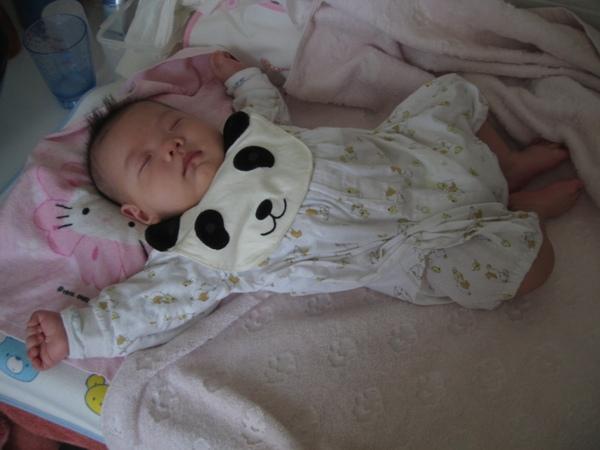 可愛熊貓圍兜兜.JPG