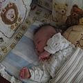 嬰兒床上正好眠.JPG