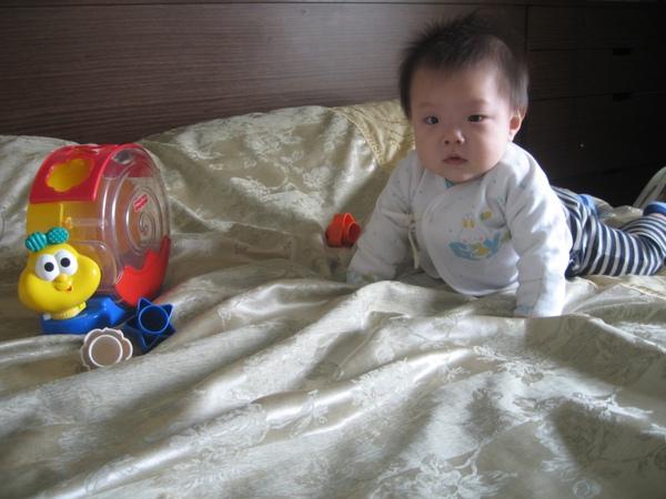 我的玩具1.JPG