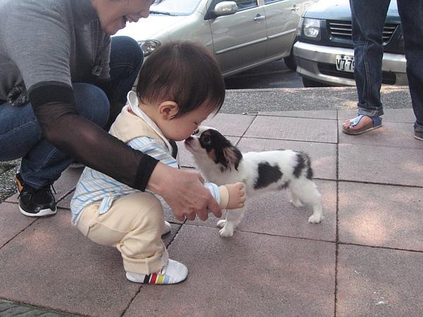 我愛狗狗.JPG