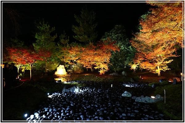 20151203H寶嚴院夜楓 001.JPG