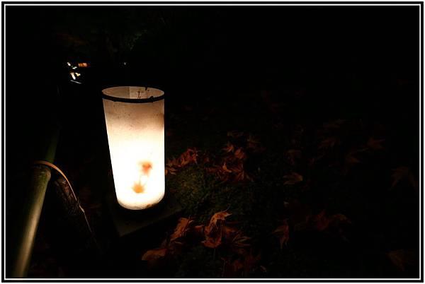 20151203H寶嚴院夜楓 108.JPG
