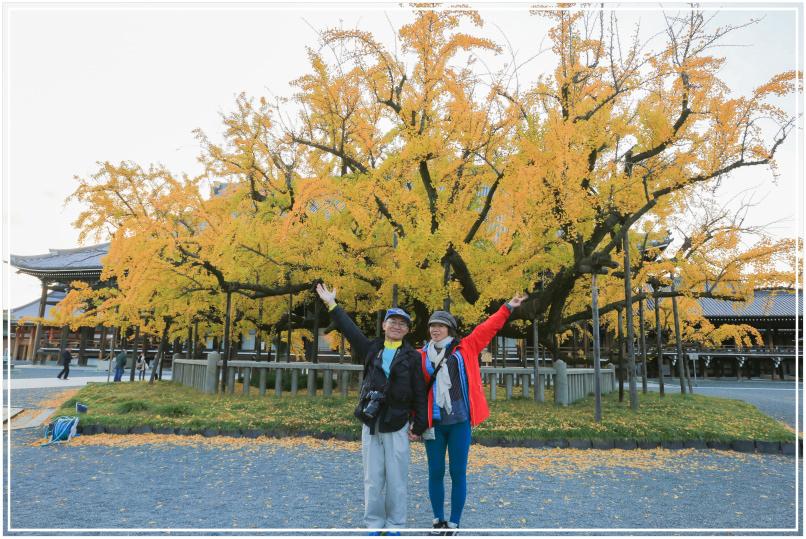20151205DA西本願寺082-1