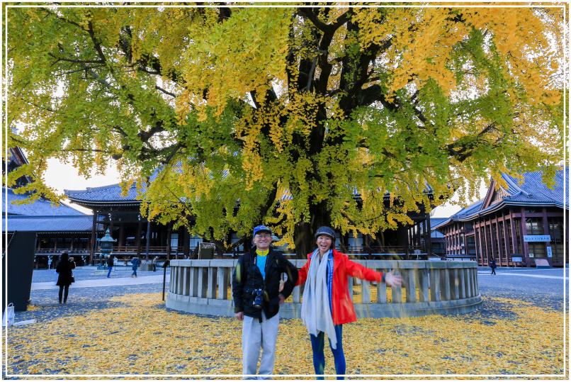 20151205DA西本願寺087-1