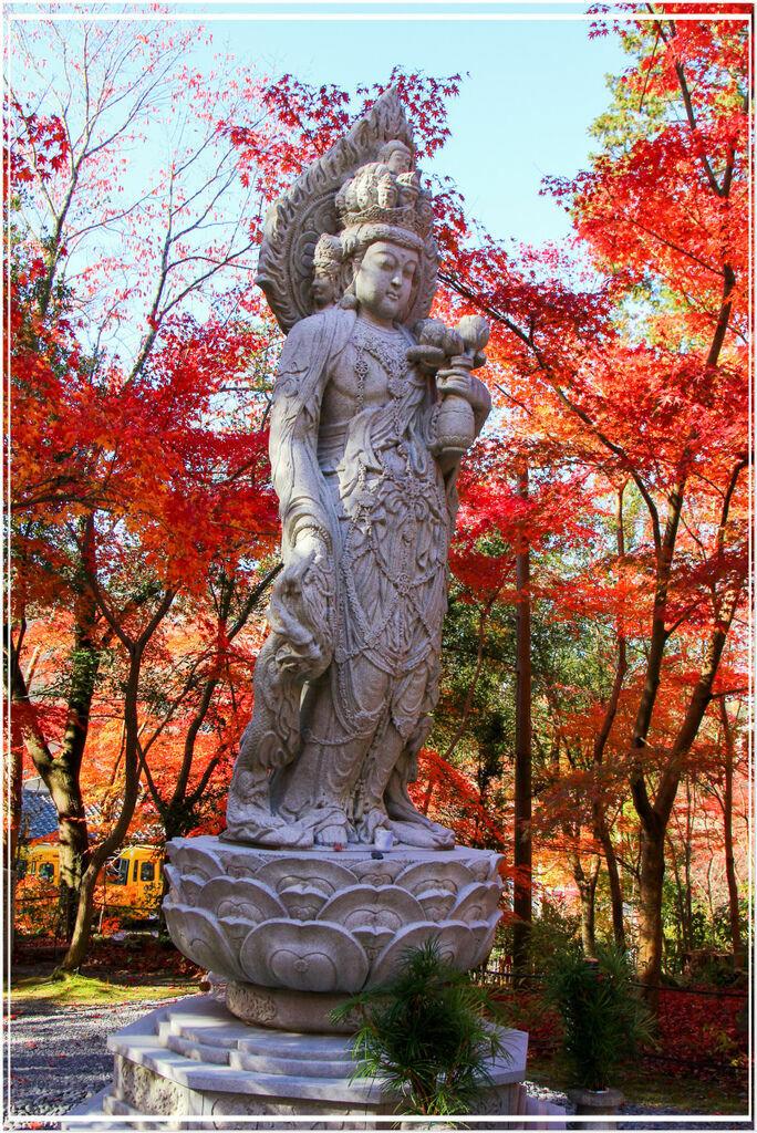 20151207BA永觀堂226-1